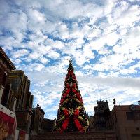 空とクリスマスツリー。