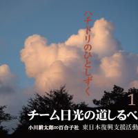 小川耕太郎∞百合子社ってどんな会社?(社会貢献支援活動について)