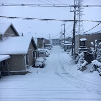 1/14吹雪