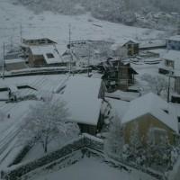 大    雪