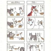 猫の4コママンガ40