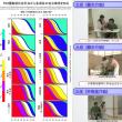 FIM講習会(西日本公式第5回)受講受付開始