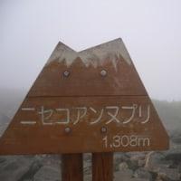 夏と言えば、北海道