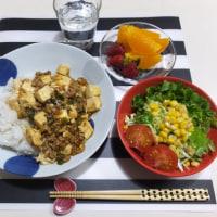 マーボー豆腐丼の夜ごはんと ダンナの夜弁当