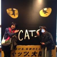 キャッツ大阪