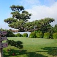 沼津にてゴルフ