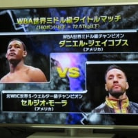 WBAミドル級タイトルマッチ
