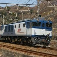 2017年3月28日 東海道貨物線 東戸塚 EF64-1017 3075レ