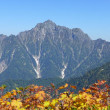 2017/07/23(日) 大日岳の魅力