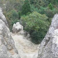 鎌が岳登山道