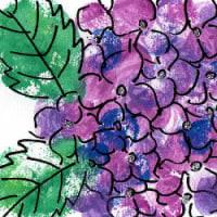 ハンコ紫陽花