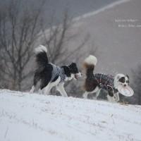 粉雪の山で Ⅱ