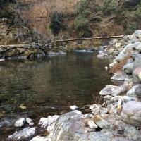 激混みの三連休道志川でヤマメとイワナを釣るッ!!その1