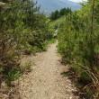五里ヶ峯に行ってみようかな・・・ ◆山頂まで 2.1km 約1時間30分 ・・・?