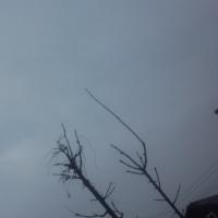 仙台の空3月25日、土曜日