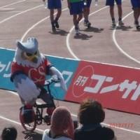 札幌こい!清水こい!松本こい!