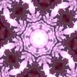 無料動画素材 「花モチーフ」素材4