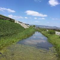 関西3日目は大空バックにジャンプ&大合唱