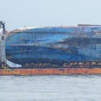 沈没から1075日ぶりに全体の姿を現わした。早ければ28日木浦へ出発する。干潮と満潮をよく考慮して運航する。