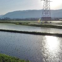 夕方近く、湖周道路を通ってピザを買いに行った(3)・・・奥琵琶湖・滋賀県高島市マキノ町