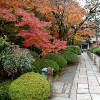 京都・太秦 広隆寺
