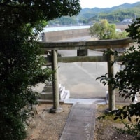 津波到達点を刻む石碑―徳島県の地震・津波碑―