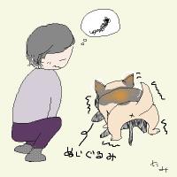 自分のこと、犬のこと。