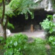北鎌倉のやぐら。