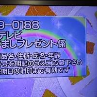 1/9・・・めざましプレゼント