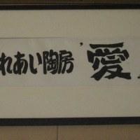 早川先生とのお別れ、、、、のらちゃんと春模様