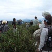 石垣市希少野生動植物保護地区での観察会