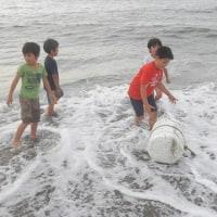 6月の砂浜最終週です