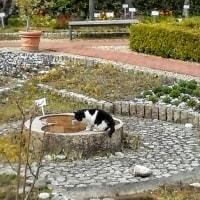 某庭園にて