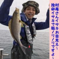 6/24の釣果
