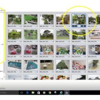 Windows10 写真をフチなしで印刷