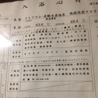 中山平温泉 三之亟湯 NO433
