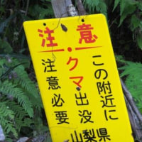 初狩 ~ 高川山 ~ 田野倉  爺さんの山歩き
