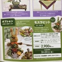 フラワーアレンジメント〜モスラビット〜