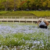 浜松ガーデンパーク・・・・・♪