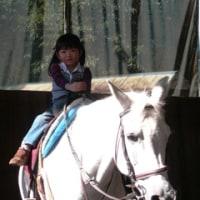 小淵沢、乗馬体験