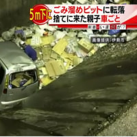 ゴミ捨てに来た親子、5メートル下のピットに転落