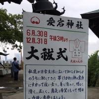 愛宕神社へ・・・6月下旬だから・・・あるよね?あった!できてよかった!茅の輪くぐりと大祓の人形