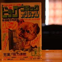 ビッグコミックオリジナル1975年5月20日号