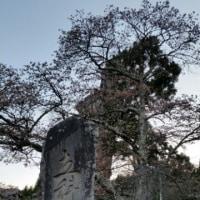 伝わりずらい小さな旅 立科町 蓼科神社 大庭遺跡
