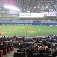 野球観戦・・・