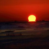 久しぶりのダルマ太陽