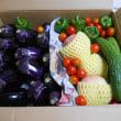 野菜&果実の詰め合わせ