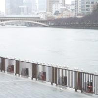 大川端の列