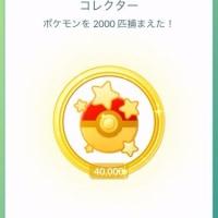 ポケモンを4万匹捕まえた!
