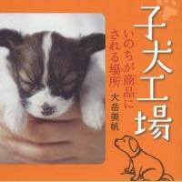 『子犬工場』4刷重版決定